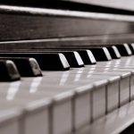 Transport von Musikinstrumenten – sicher ans Ziel