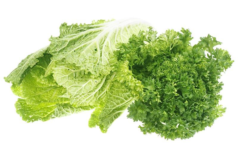 Grünes Blattgemüse ist reich an Magnesium